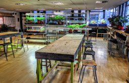 Green Lab - Corner of Collett and Keeton's Road, Bermondsey - 4