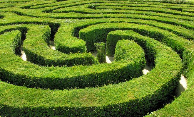 green-maze